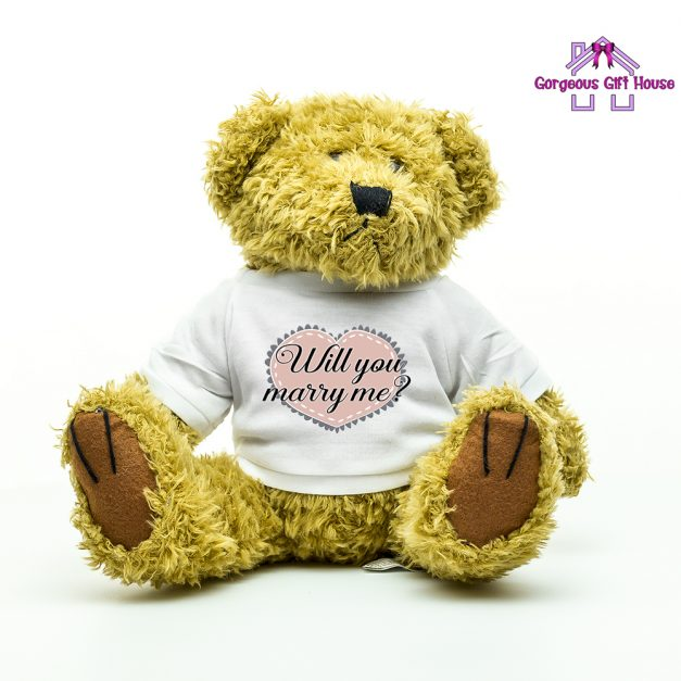 will you marry me teddy - marriage proposal idea
